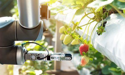 Como a tecnologia em alimentos vem avançando?