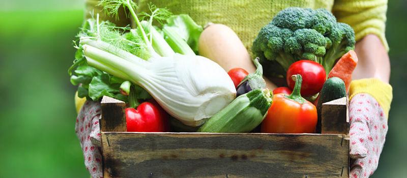 Como conservar frutas e verduras no hortifruti