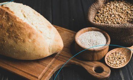 Fermento natural: sabor e qualidade para o pão de todo dia